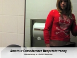 Desperatetranny Strokes in Public Bathroom